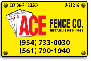 License, Insurance, and Contact Information