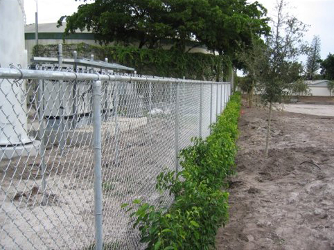 Chain Link Protective Fence