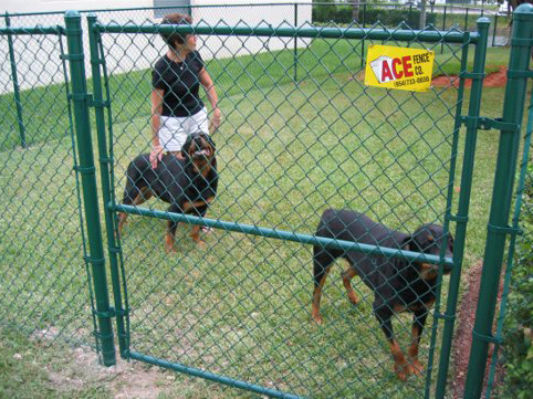 Residential Fencing Gallery Ace Fence Company
